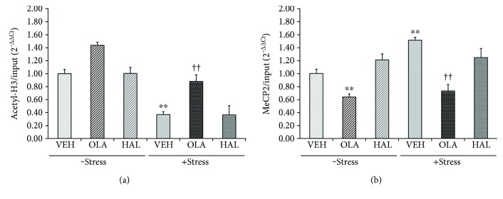 Effects of antipsychotic drugs on acetylated histone H3 and methyl CpG-binding protein 2 (MeCP2) levels at BDNF promoter IV in the rat hippocampus. Rats were given a daily injection of either VEH, OLA, or HAL for 21 d in conjunction with either + stress or − stress. Chromatin immunoprecipitation (ChIP) assays were performed to measure the levels of acetylated H3 (a) and MeCP2 (b) at BDNF promoter IV in the rat hippocampus using specific antibodies. These levels were quantified by a qRT-PCR procedure. ∗∗ p