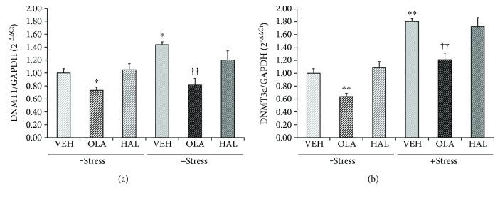 Effects of antipsychotic drugs on DNA methyltransferase (DNMT) 1 and DNMT3a mRNA levels in the rat hippocampus. Rats were given a daily injection of either VEH, OLA, or HAL for 21 d in conjunction with either + stress or − stress. The DNMT1 (a) and DNMT3a (b) mRNA levels in the rat hippocampus were assessed using a qRT-PCR procedure. The quantitative analysis was normalized to GAPDH. ∗ p