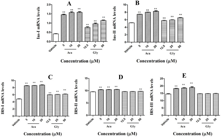 Effects of acankoreagenin on the expression of insulin secretion-related gene in RIN-m5F cells. Expression was determined after culturing the cells in six-well plate containing 20 mM glucose and then treated in the absence (vehicle) or various concentrations of acankoreagenin for 24 h. Expression levels were analyzed by real-time RT-PCR. β-actin mRNA was used as an internal control. ** p
