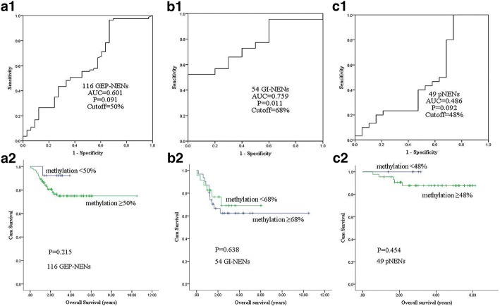 Correlation of α-internexin methylation with overall survival. a 1, b 1, c 1 Receiver operating characteristic (ROC) curve was used to determine a best cutoff value to define the methylation status of α-internexin in GEP-NENs, subtype of GI-NENs and pNENs. a 2, b 2, c 2 Overall survival by α-internexin methylation (results were examined by methylation level of the average of total 12 CpG sites) in GEP-NENs, subtype of GI-NENs and pNENs. ROC: Receiver operating characteristic; AUC: Area under ROC curve; GEP-NEN: Gastroenteropancreatic neuroendocrine neoplasm; GI-NEN: Gastrointestinal neuroendocrine neoplasm; pNEN: Pancreatic neuroendocrine neoplasm