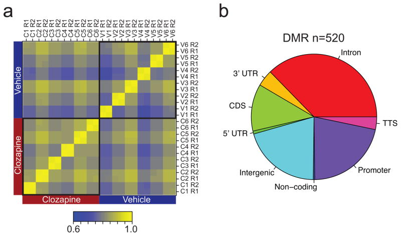 Methylomic changes in NeuN+ fraction from mouse frontal cortex associated with chronic clozapine treatment (a) Pearson's correlations among various datasets. Each group of mice has 6 biological replicates (C1–6 for clozapine-treated mice and V1–6 for control mice injected with vehicle) and each sample had 2 technical replicates (R1 and R2, each obtained with 10 ng <t>DNA).</t> (b) The distribution of CG-DMRs (identified by comparing <t>RRBS</t> data take with C1–6 and V1–6) in various genomic features.