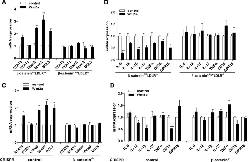 Deletion of β-catenin abolishes the impact of Wnt3a on STAT3 and proinflammatory cytokine expression in macrophages. A and B , Quantitative real-time polymerase chain reaction (QPCR) analysis of STAT3, STAT1, and STAT3 target genes ( A ) and proinflammatory genes ( B ) in bone marrow–derived macrophages (BMM) isolated from β-catenin F/F LDLR −/− and β-catenin ΔMye LDLR −/− mice treated with vehicle control or Wnt 3a (* P