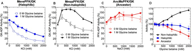 Effect of KCl, NaCl and glycine betaine on the activity of ADP-PFK/GK from Methanosarcinales . Effect of KCl or NaCl on the: (A) MevePFK/GK (halophilic), (B) MmazPFK/GK (non-halophilic), and (C) ancMsPFK/GK (ancestor) activity in the absence and presence of 1 M glycine betaine. (D) Activity of: MevePFK/GK, MmazPFK/GK and ancMsPFK/GK as a function of glycine betaine concentration in the absence of salt. In all cases, activity determinations were made at saturating substrate concentrations. Activity was expressed as the percentage of that obtained in the absence of both salt and glycine betaine.
