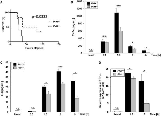 PLD1 deficiency decreases mortality in LPS-induced sepsis by modulating TNF-α expression and release. ( A ) Pld1 +/+ and Pld1 −/− mice were injected with 10 mg/kg bodyweight LPS and survival was monitored for 100 hrs. N = 10 per group. P-value = 0.0332, Log-rank Mantel-Cox test. ( B,C ) Pld1 +/+ and Pld1 −/− mice were injected with 4 mg/kg bodyweight LPS and serum TNF-α ( B ) and IL-6 ( C ) were measured at indicated time points after LPS injection and under basal conditions using ELISA. ( D ) TNF-α expression in liver tissue was analyzed by qRT-PCR at indicated time points following LPS injection. N = 5 ( B – D ). Bar graphs depict mean values ± s.e.m. *P
