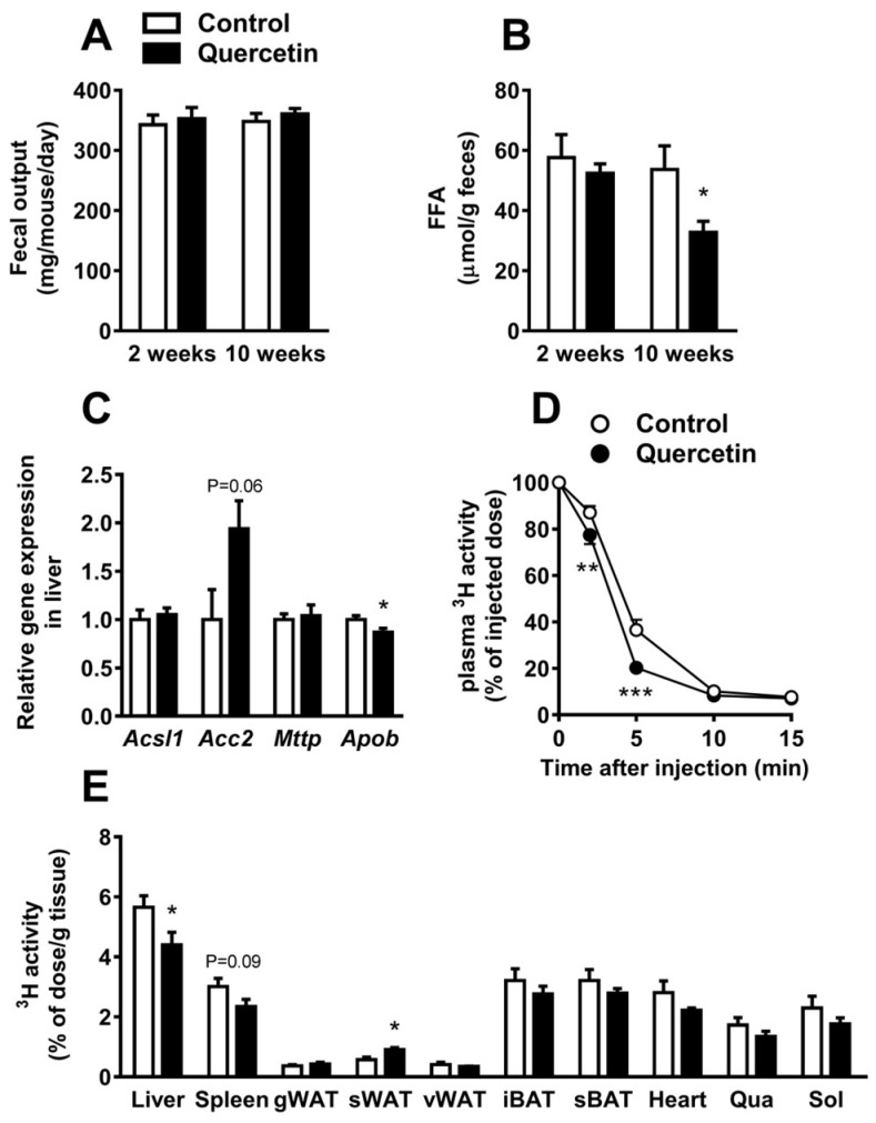 Quercetin reduces hepatic apolipoprotein B ( Apob) expression and increases the uptake of triglycerides (TG)-derived fatty acid (FA) by subcutaneous white adipose tissue. In week 2 and week 10 of the intervention, 24 h feces was collected ( A ) and used to determine fecal free fatty acid (FFA) concentration ( B ). Gene expression in the liver was determined by qRT-PCR for acyl-CoA synthetase long-chain family member 1 ( Acsl1) , acetyl-CoA carboxylase 2 ( Acc2 ), microsomal triglyceride transfer protein ( Mttp ), and Apob ( C ). After 12 weeks, mice were injected with glycerol tri[ 3 H]oleate-labeled lipoprotein-like particles, and clearance from plasma ( D ) and uptake per gram organ ( E ) were determined by 3 H-activity analysis. Data are represented as mean ± SEM ( n = 8–10); the expression of genes was corrected for the reference gene β2-microglobulin , * p
