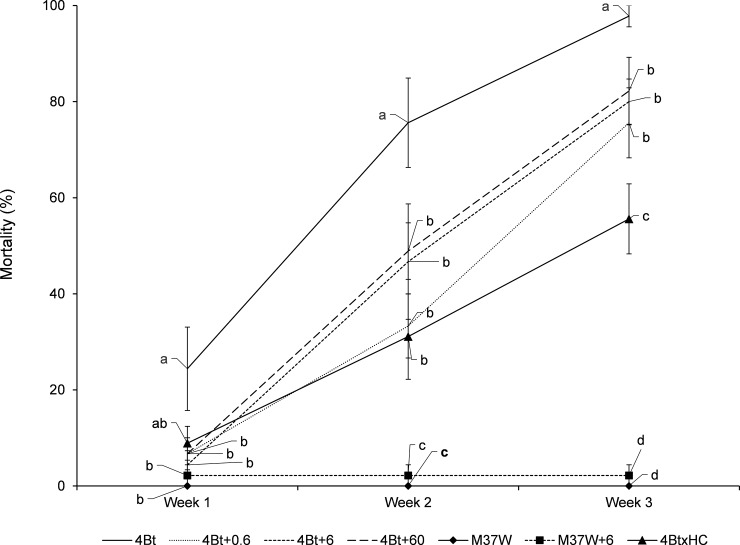 Changes in mortality percentage (mean±S.E.) of Ostrinia nubilalis larvae fed on diets made with kernels of different maize lines when different quantities of β-carotene were added to the diet (in mg/100g diet). 4Bt contained the Cry1Ac toxin, M37W was the near isogenic line, and 4BtxHC was the line with the two traits. Fifth stage larvae were treated and mortality was recorded every week for three weeks. Week 1: [F = 2.68; P