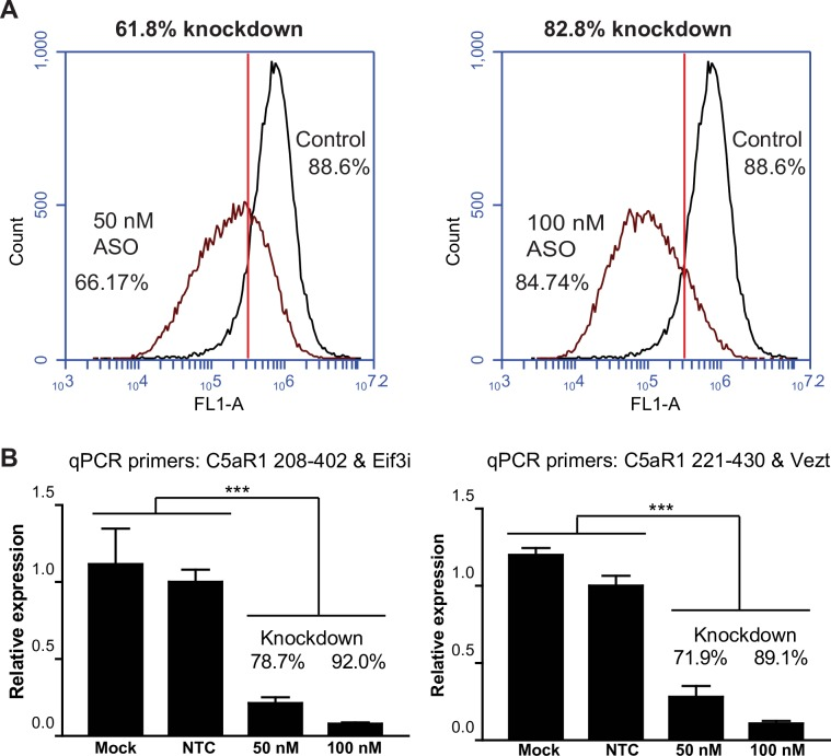 Mouse C5aR1 ASO results in knockdown of mouse C5aR1-GFP in CHO transfectants. CHO cells expressing mouse C5aR1-GFP were transfected with 50 nM or 100 nM LNA GapmeR ASO. The cells were analyzed for C5aR1-GFP expression and mRNA levels 72 h post transfection. A. Relative receptor knockdown was measured by flow cytometry. The percentage knockdown was calculated based on the number of cells to the left of the gate relative to the negative control ASO. B. Relative gene expression was calculated from quantification cycle (Cq) values obtained by RT-qPCR using the ΔΔCq method. To control for possible experimental variation, the qPCR was carried out using two sets of mouse C5aR1 primers (C5aR1 208–402 and 221–430), and two sets of reference primers. The results in the left panel show the relative quantity of C5aR1 mRNA normalized to Eif3i, and the results in the right panel show the relative quantity of C5aR1 mRNA normalized to Vezt. Mock transfected cells received no ASO and non-targeting control (NTC) cells were transfected with a non-targeting ASO. The RT-qPCR was carried out with triplicate samples ± SD. One-way analysis of variance at 95% confidence interval showed that the relative mRNA expression levels were significantly lower in the ASO treated cells compared to the mock transfected and non-targeting ASO cells ( p value