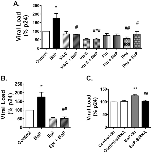 Treatment of antioxidants and CYP1A1 inhibitors reduce HIV-1 replication in U1 cells due to BaP exposure. U1 cells were concomitantly treated with BaP (1 µM) and antioxidants [vitamin C (100 µM) and vitamin E (100 µM), pinostilbene (2 µM), and resveratrol (50 µM)] ( A ) or CYP1A1 inhibitor ellipticine (1 µM)] ( B ) for 3 days. Prior to BaP treatment, the CYP1A1 gene was knocked down in the U1 cells using siRNA specific to CYP1A1. ( C ) The cells were then treated with BaP (100 nM) for 3 days. After the treatment, supernatants were collected to determine the viral load using the p24 ELISA assay. HIV-1 replication significantly increased with 3-days exposure of BaP (1 µM), which was rescued by all the antioxidants (vitamin C and E, and resveratrol) as well as the CYP1A1 inhibitor, ellipticine . The knock-down of the CYP1A1 gene also rescued HIV-1 replication in BaP-exposed U1 cells. The data were obtained from the mean of at least three independent experiments. * and ** represents p ≤ 0.05 and p ≤ 0.005 compared with the control group while #,## and ### represents p ≤ 0.05, p ≤ 0.005 and p ≤ 0.0005, respectively, compared to the BaP-treated groups.