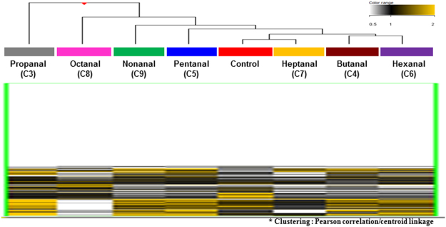 Total genome-wide profiling of DNA methylation of A549 cells exposed to the seven aldehydes compared to vehicle control group (DMSO). The heatmap shows the DNA methylation profiles of aldehydes exposed A549 cells based on hierarchical clustering (Yellow: hypermethylation; Black: hypomethylation).