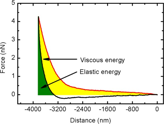 Biomechanical analysis of HEK293T cells in phosphate buffer solution (PBS) buffer. A sample force versus distance curve obtained on an untreated HEK293T cell shows the tip approach (red) and withdrawal (back). The energy involved in the indentation process includes two parts: elastic energy (green) and viscous energy (yellow).