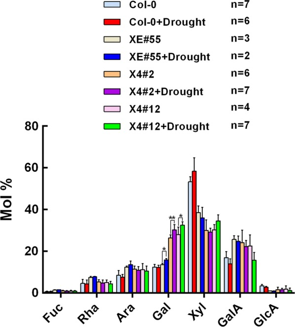 Monosaccharide composition of the cell wall from the Col-0 and engineered plants with low xylan under drought stress treatment. Cell wall material (AIR) was prepared from fresh main stem, hydrolyzed with 2 M trifluoroacetic acid (TFA), then analyzed by high-performance anion-exchange chromatography. Values show average ± SD ( n shown in the picture). Asterisks indicate significant differences between well-watered and drought stress conditions ( t test, * P