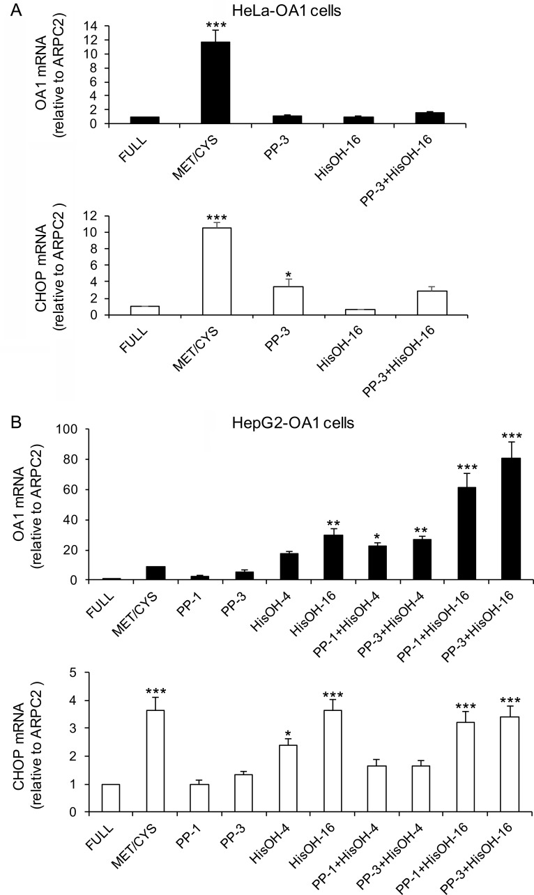 mTOR inhibition and GCN2 activation differently affect transgene expression in HeLa and HepG2 cells. Relative transgene (OA1) and CHOP mRNA abundance in HeLa-OA1 (A) and HepG2-OA1 (B) cells, cultured in Met/Cys-deprived medium, or in the presence of PP242 (mTOR inhibitor; 1–3 μM) or L-Histidinol (HisOH, GCN2 activator; 4–16 mM), either alone or in combination for 24–48 h, compared to full medium. Mean ± SEM of 4 (A) or 3 (B) independent experiments. Data are expressed as fold change vs. control (full medium = 1). *P