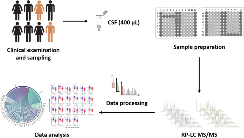 Study design and cerebrospinal fluid (CSF) proteome profiling workflow. CSF samples from 120 older individuals with or without cognitive impairment were analyzed using a highly automated shotgun MS-based proteomic workflow. The workflow consists of first removing 14 highly abundant proteins in CSF by immunoaffinity. The rest of the workflow is automated in a 96-well plate format and includes steps of (1) reduction, alkylation, and enzymatic digestion; (2) isobaric labeling and pooling; and (3) purifications. The samples are analyzed with reversed-phase LC-MS/MS, and the data are processed with standard bioinformatic tools
