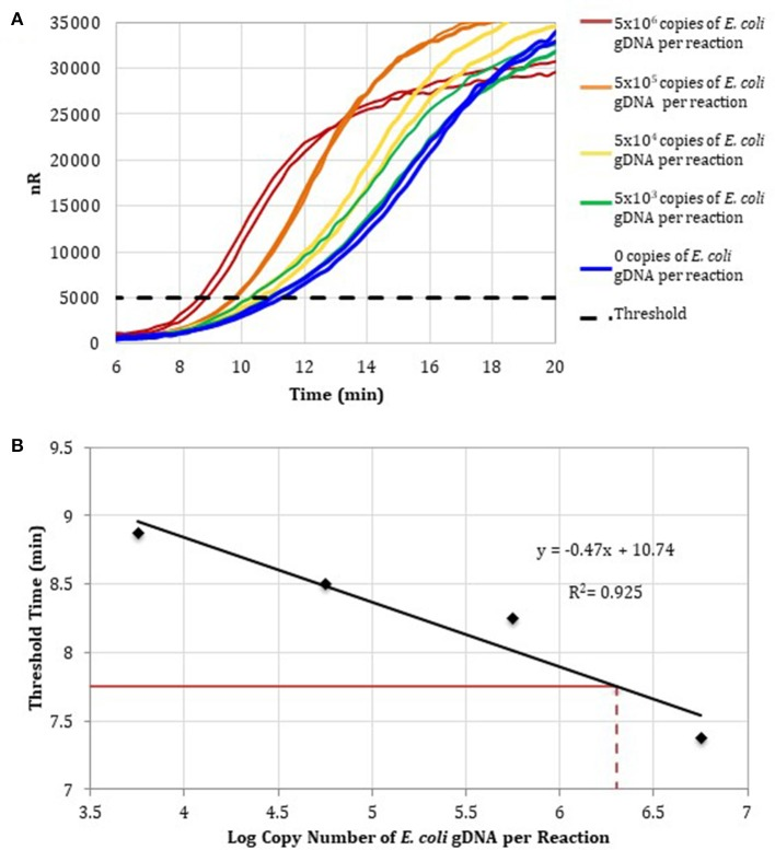 (A) RPA amplification curves generated using the primer set 1, 0–10 6 copies of E. coli gDNA (2 μL per reaction; n = 2), and RPA reagents pre-treated with anti-dsDNA antibody-coupled magnetic particles. (B) RPA standard curve was generated using the average threshold times calculated from measurements in (A) ( n = 2). The fecal DNA exhibited an average threshold time of 7. 75 min (solid red line) and an estimated load of 6.3-log copies of bacterial gDNA per reaction (dotted red line) or a total bacterial load of 1.01 × 10 7 bacterial gDNA copies per 15 ng of isolated gDNA.