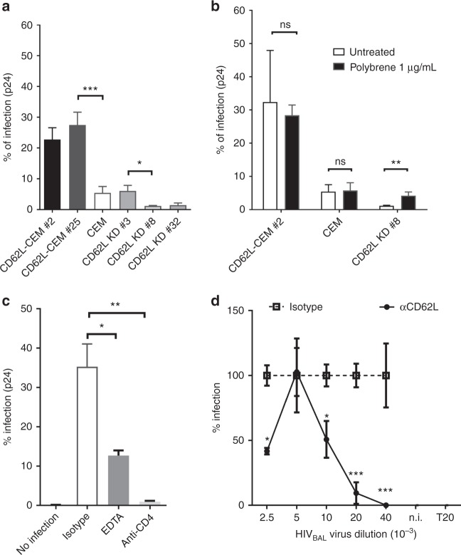 L-selectin facilitates HIV-1 infection of CD4 + T cells. a HIV infection of CD62L-transfected clones (CD62L-CEM #2 and #25) or untransfected Rev-CEM cells, as well as CD62L knockdown clones, CD62L KD #3, #8, and #32. CD62L KD #8 and #32 lost CD62L expression whereas #3 retained parental CD62L expression (Supplementary Figure 4 ). b HIV infection of CEM cell lines in the presence and absence of 1 µg/mL polybrene. c HIV-1 BAL infection of PBMC in the presence of EDTA or anti-CD4 (RPA-T4). The infection was measured by intracellular p24 + staining. d Dose-dependent HIV-1 BAL infection of PBMC in the presence of CD62L blocking antibody DREG-56 or isotype controls. Infections were measured as copy numbers of viral DNA by real-time PCR and displayed as % relative to the isotype controls. The results are from at least two independent experiments and statistics are performed without data rejections