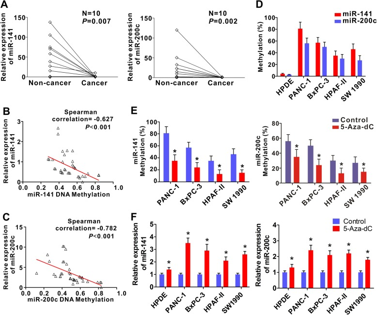 CpG hypermethylation is responsible for the silencing of miR-141 and miR-200c. a Expression of miR-141 and miR-200c in 10 paired PDAC and their surrounding non-cancerous tissues. The mRNA expression was measured by qRT–PCR. U6 was used as internal reference. b Correlation between the expression of miRNA-141 and its CpG methylation level in 37 PDAC tissues using Spearman's correlation analysis. c Correlation between the expression of miRNA-200c and its CpG methylation level in 37 PDAC tissues using Spearman's correlation analysis. d Levels of methylation of miR-141 and miR-200c promoter region in human pancreatic ductal epithelial cells (HPDE) and pancreatic cancer cell lines (PANC-1, BxPC-3, HPAF-II, and SW1990). Note the levels of methylation in the pancreatic cell lines were all dramatically higher than HPDE cells. The data were derived from three sets of experiments. Error bars are represented as the mean +/− SD. e Change of methylation levels of miR-141 and miR-200c promoter in pancreatic cancer cell lines in response to 5-Aza-dC treatment. f Relative levels of miR-141 and miR-200c expression in response to 5-Aza-dC treatment in the pancreatic cancer cell lines. For both ( e ) and ( f ), Data were derived from three sets of experiments. Error bars are repreented as the mean +/− SD. * P