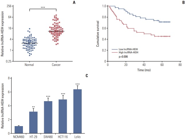 Long noncoding RNA HEIH (lncRNA-HEIH) is up-regulated in colorectal cancer (CRC) and indicts poor prognosis of CRC patients. (A) The expression of lncRNA-HEIH in 84 paired CRC and adjacent normal mucosa was detected by quantitative real-time polymerase chain reaction (qRT-PCR) and normalized to glyceraldehyde 3-phosphate dehydrogenase (GAPDH). ***p