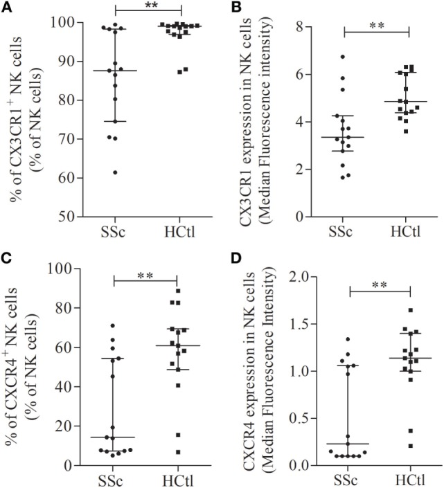 Chemokine receptors expression in natural killer (NK) cells in systemic sclerosis (SSc) patients. CX3CR1 (A,B) and CXCR4 expression levels and percentages (C,D) were assessed with flow cytometry analysis in whole NK cell from SSc patients ( n = 15) in comparison with healthy controls (HCtl) ( n = 15). Results were expressed as percentages of positive cells among NK cells (A,C) and median fluorescence intensity (B,D) . Results were depicted as median ± interquartile range. Statistical difference was established using Mann–Whitney U test. ** p
