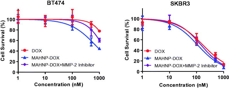 Cytotoxicity profiles of free DOX, MAHNP-DOX and MAHNP-DOX with MMP-2 inhibitor pretreatment of BT474 and SKBR3 cells ( n = 3).