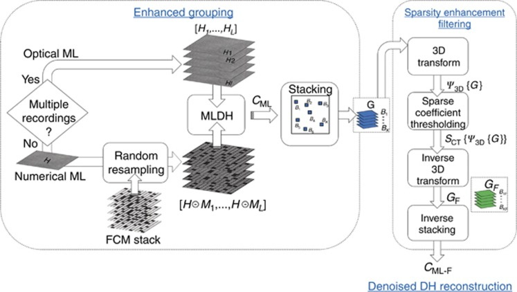 Block scheme of the MLDH-BM3D algorithm. EG and SEF are sequential and complementary steps returning the MLDH-BM3D reconstruction.