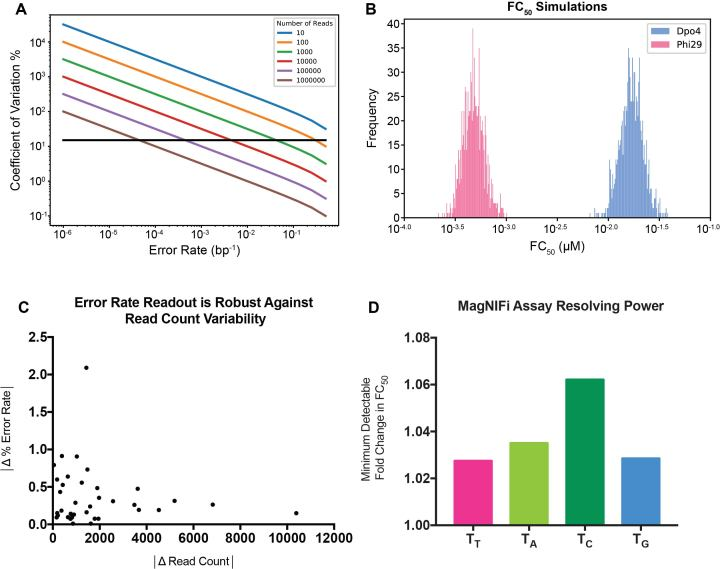 Assessing MagNIFi assay potential. ( A ) Simulation of the minimum number of sequencing reads required to accurately measure different error rates. Black line denotes a CV of 15%. ( B ) Sensitivity of FC 50 values to sampling error and DNA polymerase stochasticity. Distribution of calculated FC 50 values for 1000 simulated rare base titration experiments, with each rare base condition receiving 50 simulated reads. Each condition was simulated by drawing 50 samples from a Bernoulli process with an underlying error rate equal to the experimentally derived error rate. FC 50 values were determined using the fitting procedure described in Methods. Histograms are shown for simulations based on Dpo4 (blue) and Phi29 (pink) error rates in a 'T' template context. ( C ) Determination of MagNIFi assay sample variability across different read counts. Error rate data collected for Dpo4 copying in all four template contexts reveal that error rate differences between 36 sets of biological replicates ( n = 2) do not vary with read count differences between the same set of biological replicates. ( D ) Resolving power of the MagNIFi assay based on FC 50 sensitivity. Minimum detectable fold change in FC 50 was determined based on the 95% confidence interval of the fitted FC 50 (see Supplementary Table S3 for values). The ratio of the Upper Bound 95% CI: Fitted FC 50 was determined for Dpo4 copying in 'T', 'A', 'C' and 'G' template contexts.