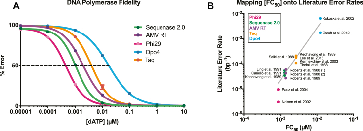 MagNIFi assay validation. ( A ) Fidelity dose response curves of Sequenase 2.0, AMV RT, Phi29, Dpo4 and Taq copying in 'T' template contexts. Values are the average of two experiments. Standard deviation error bars ( n = 2) are smaller than data points. Curves show qualitative agreement between DNA polymerase FC 50 values (indicated by black dotted line) and the expected rank order of natural DNA polymerase error rates ( Supplementary Table S4 ). In general, fidelity increases from right to left. ( B ) Calibration between error rate and [FC 50 ]. We show a calibration curve relating multiple reported error rates per DNA polymerase ( Supplementary Table S4 ) and the average FC 50 value of each DNA polymerase ( Supplementary Table S3 ). Nonlinear fitting on a log–log plot (line of best fit in grey) revealed the following equation: \documentclass[12pt]{minimal} \usepackage{amsmath} \usepackage{wasysym} \usepackage{amsfonts} \usepackage{amssymb} \usepackage{amsbsy} \usepackage{upgreek} \usepackage{mathrsfs} \setlength{\oddsidemargin}{-69pt} \begin{document} }{}$y = 10^{(2.063log(x) + 1.557)}$\end{document} , RMSE = 0.0008998 errors/bp.