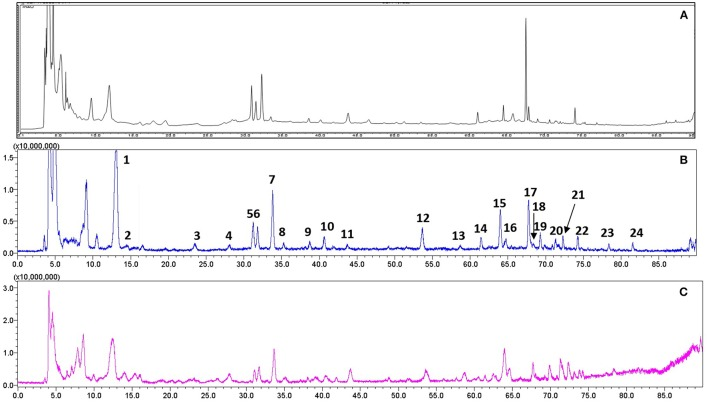 Representative chromatograms of RR extract analyzed on <t>LCMS-IT-TOF.</t> (A) UV chromatogram at 210 nm; (B) Total negative iron chromatogram; (C) Total positive iron chromatogram.