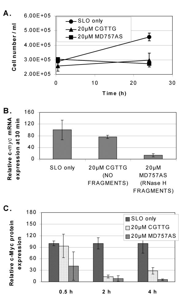 Comparison of the chimeric c- myc  antisense 20-mer, 5'F-MD757AS (Table   1 ) with the CpG 5-mer motif CGTTG contained within its phosphodiester section for effects on c- myc  mRNA, c-Myc protein and proliferation of KYO1 cells. Cells were loaded with oligodeoxynucleotide by streptolysin O permeabilization from an external concentration of 20 μM. (A) Cell proliferation over 24 h. (B) Levels of full length c- myc  mRNA 30 min after oligodeoxynucleotide delivery. RNase H-generated mRNA fragments were visible on the Northern blot for cells treated with the 20-mer but not the 5-mer. (C) Relative levels of c-Myc protein. Values in all panels are the mean and standard deviation of 3 replicates.