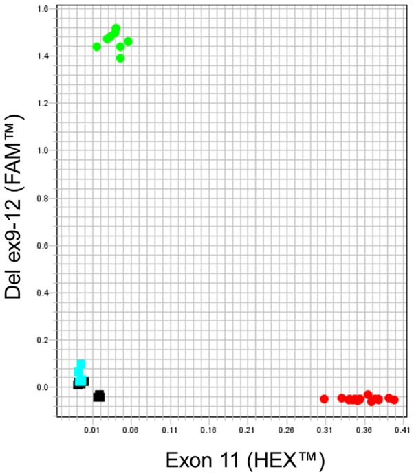 Genotyping assay for the detection of the mutant allele (with the BRCA1 ex9-12del mutation) and the wild-type allele (exon 11) by real-time <t>PCR</t> and <t>TaqMan</t> ® probes. The AD plot shows 2 groups; green color samples have the allele with the deletion, samples in red color possess exon 11 or the wild-type allele (in this group all the samples are present, the 6 negative and the 4 positive ones). Samples in blue color are negative samples for the deletion, which have no fluorescence and are classified by the software as negatives. Negative controls are shown in black squares. Each sample was processed by duplicate. The axis values represent relative fluorescence (∆Rn) between both dyes (FAM ™ for the mutant allele and HEX ™ for the wild-type allele). PCR, polymerase chain reaction; AD, allelic discrimination.