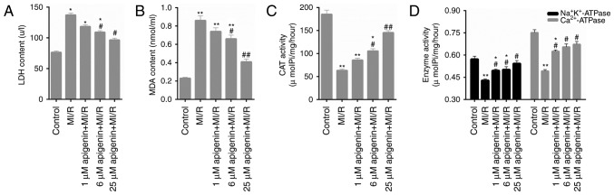 Apigenin decreases the oxidative stress in MI/R-induced H9C2 cells. H9C2 cells were treated with MI/R, and 1, 6 and 25 µM apigenin + MI/R. The levels of (A) <t>LDH,</t> (B) MDA, (C) <t>CAT</t> (D) and ATPase in H9C2 cells was determined using commercial kits. *P