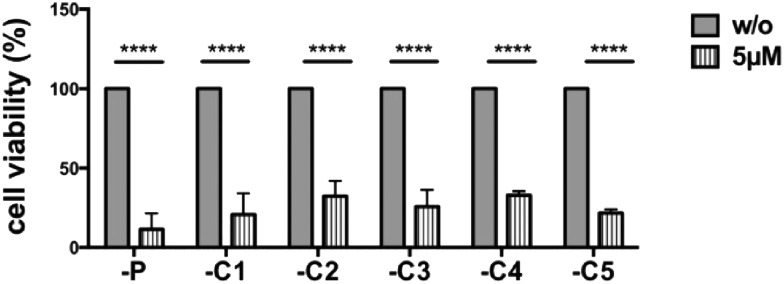 Selected canertinib resistant colonies become sensitive again to drug treatment when cultured at low cell densities. Parental and 5 selected colonies of Tu-2449 glioma cells were plated at low densities (comparable to Fig. 2 panel one) and treated with 5 μM canertinib or only the growth medium. The drug was replenished in the growth medium in 24 hour intervals. Cell viability was monitored after 24, 48 and 72 h using the AlamarBlue® assay. Repeated addition of 5 μM canertinib significantly reduced the cell viability in all analyzed cell clones after 72 h. Results are presented as mean ± SD, with respect to 72 h untreated cells; **** p