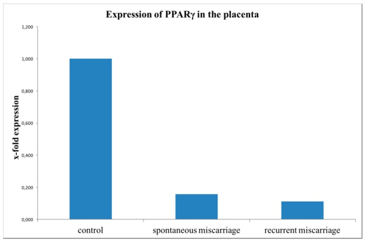 Results of PPARγ mRNA expression analysis with TaqMan RT-PCR from trophoblastic tissue. PPARγ mRNA expression was significantly downregulated in the miscarriage groups (SM, 15 cases, p = 0.01) and RM, 16 cases, p = 0.004)) compared to the healthy controls (15 cases). This bar graph shows the mean of relative PPARγ expression; therefore, the presentation of error bars is not appropriate.