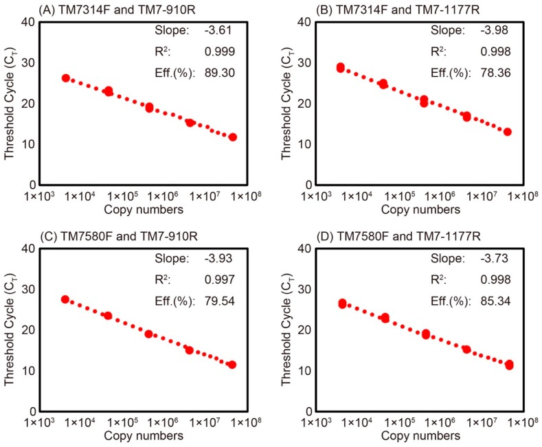Standard curves of Saccharibacteria qPCR for the measurement of activated sludge samples using 10-fold serial dilutions of plasmid DNA carrying Saccharibacteria 16S rRNA genes and the four primer sets: TM7314F and TM7-910R ( A ); TM7314F and TM7-1177R ( B ); TM7580F and TM7-910R ( C ); and TM7580F and TM7-1177R ( D ). The slope, coefficient of determination (R 2 ), and amplification efficiency are also shown in the figures.