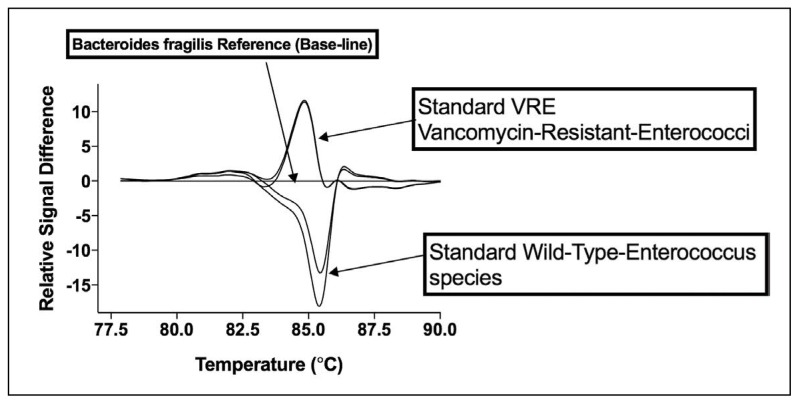 PCR-HRMA difference plots of VRE and VSE E faecalis and E faecium generated against B fragilis using V1 primer set. Difference curve plots for (A) VSE (NCTC 77, NCIMB 2699) and (B) vanA/B VRE (ATCC 19434, ATCC 51299, ATCC 29212) standard strains of E faecalis and E faecium . Each assay contained 250 pg of bacterial DNA. B fragilis was also included as the reference organism for generating VRE/VSE difference curves (plots). B fragilis amplifies with the same efficiency as the E faecalis and E faecium strains.