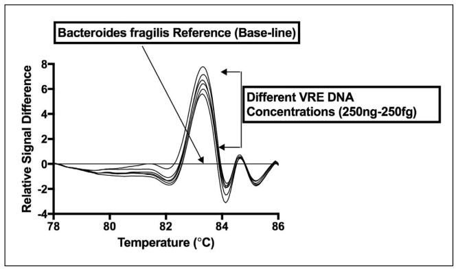 Analytical sensitivity of VRE PCR-HRMA assay using the V1 primer set. Data show that the characteristic difference curve shape for VRE (using DNA from VRE E faecalis strain ATCC 29212) is maintained over a 6-log concentration range (250 fg to 250 ng DNA).