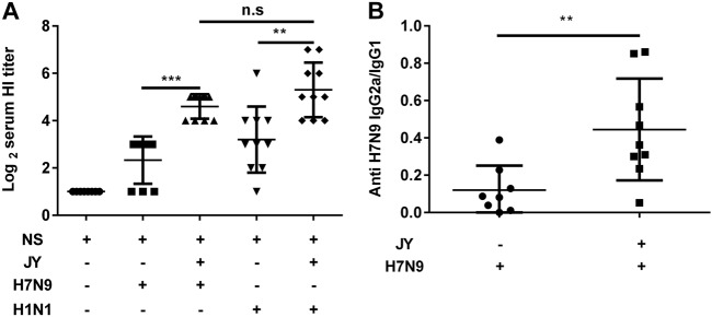Effect of JY adjuvant on the immunogenicity of the nasal spray H7N9 or H1N1 vaccine. Mice were immunized twice (1-week interval) with the H7N9 or H1N1 influenza vaccine with or without JY adjuvant. The HI titers in serum were determined by the HI assay with virus H7N9 (A/shanghai/02/2013) or H1N1 (A/California/07/2009). The subclasses of the anti-HA IgG (IgG2a and IgG1) in serum were detected by ELISA. The data are shown as the geometric mean of mice in each group with their corresponding SD on a log 2 scale, and the results were compared using Student's t -test. Differences with a P -value