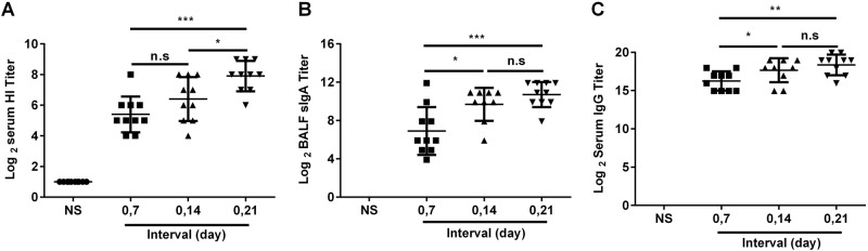Optimal immunization interval. BALB/c mice were randomly divided into four groups and intranasally immunized with the JY-adjuvanted H7N9 nasal spray vaccine containing 4.5 μg HA at 7-day, 14-day, and 21-day intervals or an NS control. Three weeks after the last immunization, serum and BALF were collected. The titers of HI and anti-HA IgG in serum and of sIgA in BALF were detected using the HI assay or ELISA. The data are shown as the geometric mean of all mice in each group with the corresponding SD on a log 2 scale, and the results were compared using Student's t -test. Differences with a P -value