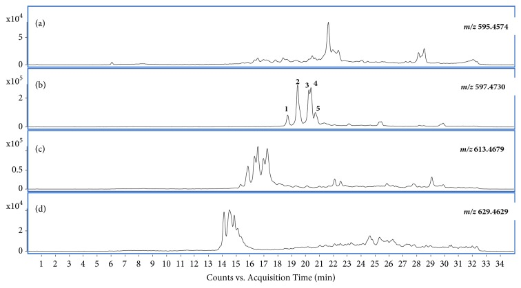 The extracted-ion chromatograms obtained for the A. muricata leaf extract using HPLC-QTOF . (a) EIC of m/z 595.4574 (± 10.0 ppm) [C 35 H 62 O 7 +H]+; (b) EIC of m/z 597.4730 (± 10.0 ppm) [C 35 H 64 O 7 +H]+; (c) EIC of m/z 613.4679 (± 10.0 ppm) [C 35 H 64 O 8 +H]+; (d) EIC of m/z 629.4629 (± 10.0 ppm) [C 35 H 64 O 9 +H]+.