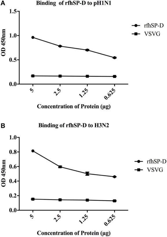 ELISA to show binding of rfhSP-D to (A) pH1N1 and (B) H3N2: <t>microtiter</t> wells were coated with different concentrations of rfhSP-D (5, 2.5, 1.25, and 0.625 µg/ml). 20 µl of concentrated pH1N1 or H3N2 virus (1.36 × 10 6 pfu/ml) was diluted in 200 µl of <t>PBS</t> + 5 mM CaCl 2 and 10 µl of diluted virus was added to all the wells, and probed with either monoclonal anti-influenza virus H1 or polyclonal anti-influenza virus H3 antibody. VSV-G pseudotyped lentivirus was used as a negative RNA virus control. The data were expressed as mean of three independent experiments done in triplicates ± SEM.