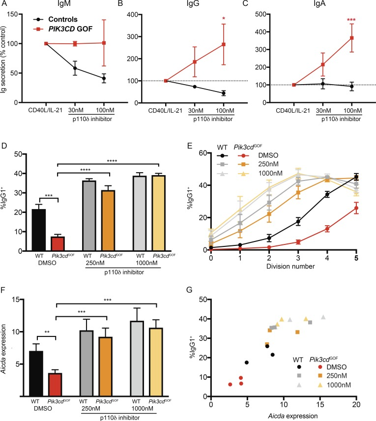 A p110δ inhibitor partially alleviates the defects in B cell differentiation due to hyperactive PI3K signaling. (A–C) Sort-purified transitional B cells from healthy donors or PIK3CD GOF patients ( n = 5) were cultured for 5 d with CD40L plus IL-21 in the absence or presence of the PI3K p110δ inhibitor leniolisib. Secretion of (A) IgM, (B) IgG, and (C) IgA was then determined. Data are expressed as mean percentage of Ig secreted (± SEM) by B cells stimulated with CD40L/IL-21. (D–G) Follicular B cells (B220 + CD93 − CD23 + CD21 lo ) were sorted from the spleens of WT or Pik3cd GOF mice. Cells were labeled with CFSE and stimulated with anti-CD40 + IL-4 in the absence or presence of leniolisib for 4 d. (D and E) Cells were stained for expression of IgG1 and the total percentage of IgG1+ B cells detected (D) and the % of IgG1+ B cells in each division as determined by CFSE dilution (E) were determined. (F) Expression of Aicda in WT or Pik3cd GOF B cells cultured with anti-CD40 + IL-4 was determined by qPCR. Plots show mean ± SEM, n = 3. (G) Plot of Aicda expression versus percentage IgG1+ cells generated following culture of WT or Pik3cd GOF B cells with anti-CD40 + IL-4 in the absence or presence of leniolisib. Significant differences were determined by two-way ANOVA. **, P