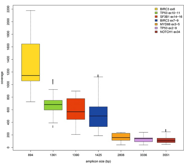 Boxplot of sequencing depth data and amplicons size (bp). The range of read depth was more uniform for longer amplicons and inversely related to the amplicon size, the smaller amplicons showing a higher sequencing depth.