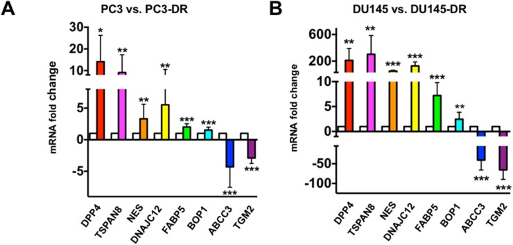 In-house qPCR validation of the expression of selected top-ranked genes from RNA-seq results in DTX-sensitive and DTX–resistant mCRPC cells qPCR validation for selected genes in (A) PC3 vs. PC3-DR and (B) DU145 vs. DU145-DR cells. White bars represent parental PC3 or DU145 and colored bars represent PC3-DR or DU145-DR. * P