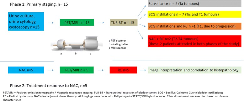 Flow chart of the study protocol. The trial consisted of two phases: in phase 1 accuracy of 11 C-acetate PET/MRI was evaluated on 15 treatment naive patients before any intervention of primary tumor. In phase 2 treatment response to Neoadjuvant chemotherapy (NAC) was evaluated in 5 patients undergoing 11 C-acetate PET/MRI after transurethral resection of bladder tumor (TUR-BT) and neoadjuvant chemotherapy. 2 patients participated in both phases of the study. In total, 18 patients were enrolled