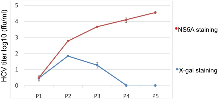 Kinetics <t>assay</t> of the JFH1-AM120-LacZ HCV reporter after multiple passages. The cells transfected with the RNA of JFH1-AM120-LacZ were passaged at every three days for a total of 15 days. Supernatants collected were designated P1 to P5. The double titrations were carried out by <t>X-gal</t> <t>staining</t> for β-galactosidase and immunofluoresence staining for NS5A protein (see Materials and Methods). Experiments were performed three times and the data presented as the mean ± SD.
