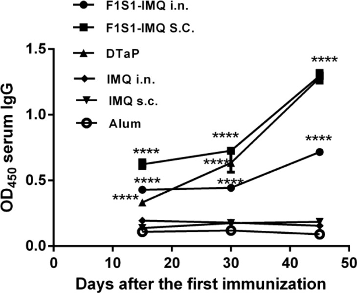 The kinetics of the F1S1-specific serum IgG antibody responses. Sera from 5 mice in each group were pooled and assayed in triplicates. The comparisons were made with adjuvant-treated control groups. (**** P