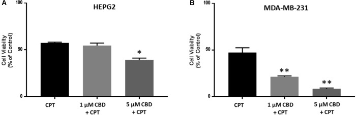 CBD sensitizes HEPG2 and MD-MB-231 cancer cells to cisplatin-mediated apoptosis. HEPG2 (A) and MDA-MB-231 (B) cells were treated with 1 or 5 μM CBD for 24 h prior to further 24 h incubation with cisplatin (CSP, 100 μM). Cell viability was assessed by MTT assay. Data shown is repeated three times with three technical replicates per plate. Data is represented as mean ± SEM. ∗ p