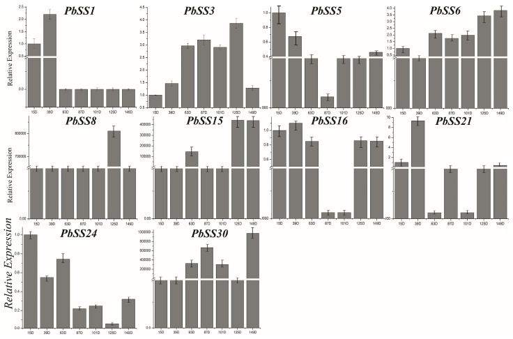 Expression patterns of PbSSs genes during different development stages, including 15, 39, 63, 22, 87, 101, 125 and 149 (DAF) as determined by qRT-PCR experiment. Mean values and standard deviations (SDs) indicated by error bars. ** significant difference ( p