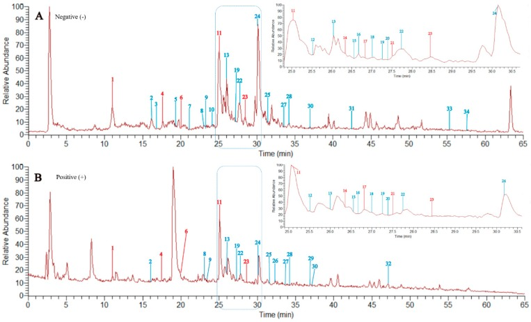The total ion chromatograms (TIC) of the total flavonoids of P. pulchellum by high-performance liquid chromatography-linear ion trap quadrupole-Orbitrap-mass spectrometry (HPLC-LTQ-Orbitrap-MS) in negative ion mode ( A ) and positive ion mode ( B ). The compounds that are confirmed with the isolated reference compounds are marked in red.