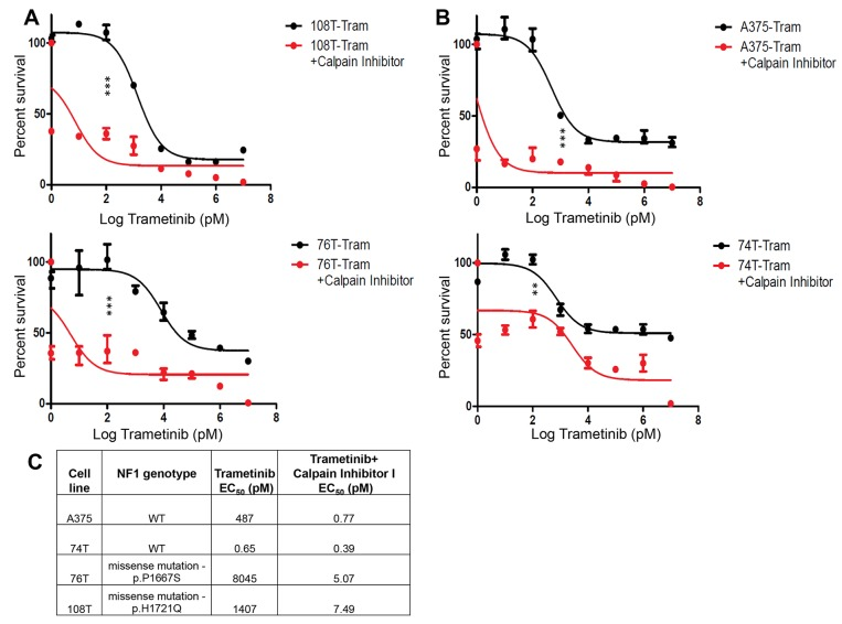 NF1 mutant and wild-type cell lines show enhanced sensitivity to combined CAPN1 and MEKi inhibition (A) Representative dose response curves were generated using NF1 mutant cell lines (108T and 76T) treated with constant concentration of Calpain inhibitor I (6 μM) and increasing concentrations of Trametinib (1 pM - 10 μM) for 72 hours before assessing viability by Cell Titer-Glo Luminescent Cell viability assay (n=3). The relative cell number after cells were treated with Calpain inhibitor I and Trametinib is plotted as percent survival, as compared to Trametinib-treated control, versus log Trametinib concentration in pM. (B) Representative dose response curves were generated using NF1 wild-type cell lines (A375 and 74T) treated with constant concentration of Calpain inhibitor I (6 μM and 4 μM, respectively) and increasing concentrations of Trametinib (1 pM - 10 μM) for 72 hours before assessing viability by Cell Titer-Glo Luminescent Cell viability assay (n=3). The relative cell number after cells were treated with Calpain inhibitor I and Trametinib is plotted as percent survival, as compared to Trametinib-treated control, versus log Trametinib concentration in pM. ** P