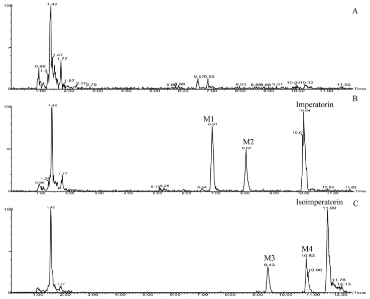 <t>Ultra-performance</t> <t>liquid</t> <t>chromatography–mass</t> <t>spectrometry</t> combined with electrospray ionization (UPLC–ESI–MS/MS) total ion current chromatograms. ( A ) The blank human liver microsomes sample. ( B ) The metabolism sample of imperatorin, with metabolites of M1 and M2. ( C ) The metabolism sample of isoimperatorin, with metabolites of M3 and M4.